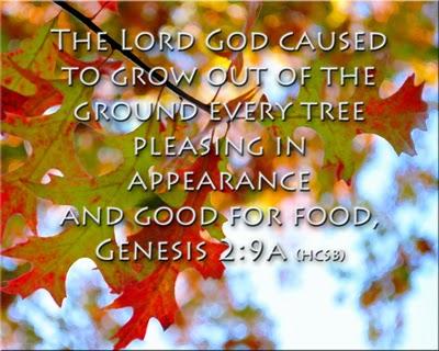 Genisis 2:9