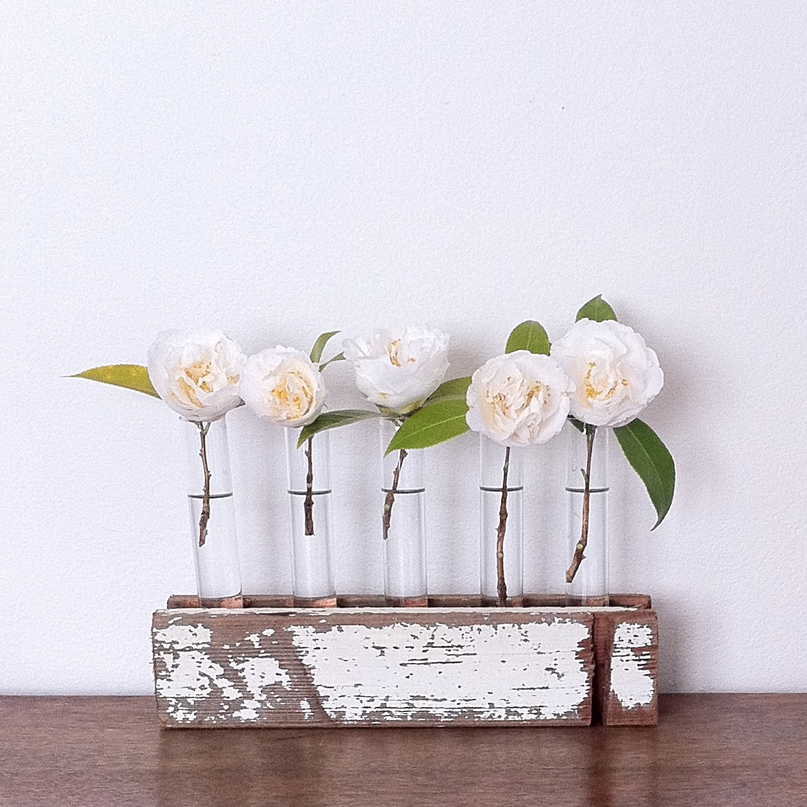 Test Tube Vase Home Decor