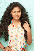 Shruti reddy sizzling photos gallery-thumbnail-14