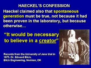 Evolution is a Lie - Intelligent Design is the Truth! Slide71