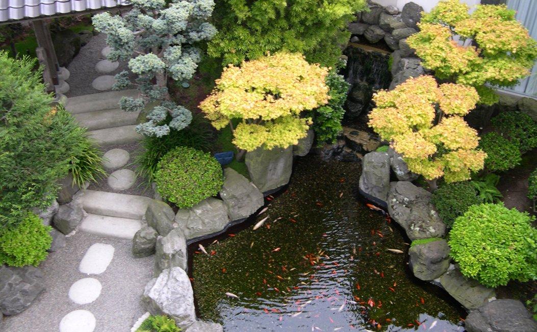 Decoracion De Jardines Con Plantas Decoracin De Jardn Con Botellas - Como-decorar-un-jardin-con-plantas-y-flores
