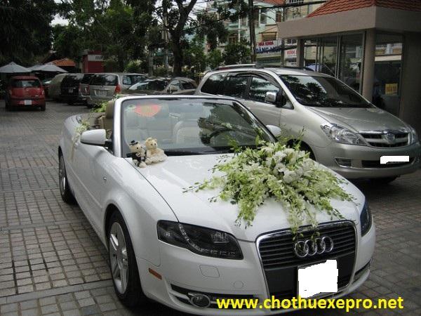Cho thuê xe cưới Audi S5 giá rẻ tại Hà Nội