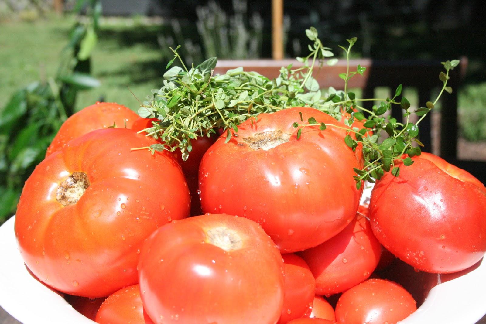 Thyme Pasta with Garden Tomato Sauce