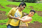 Elukaa Mazakaa movie Photos Gallery-thumbnail-5