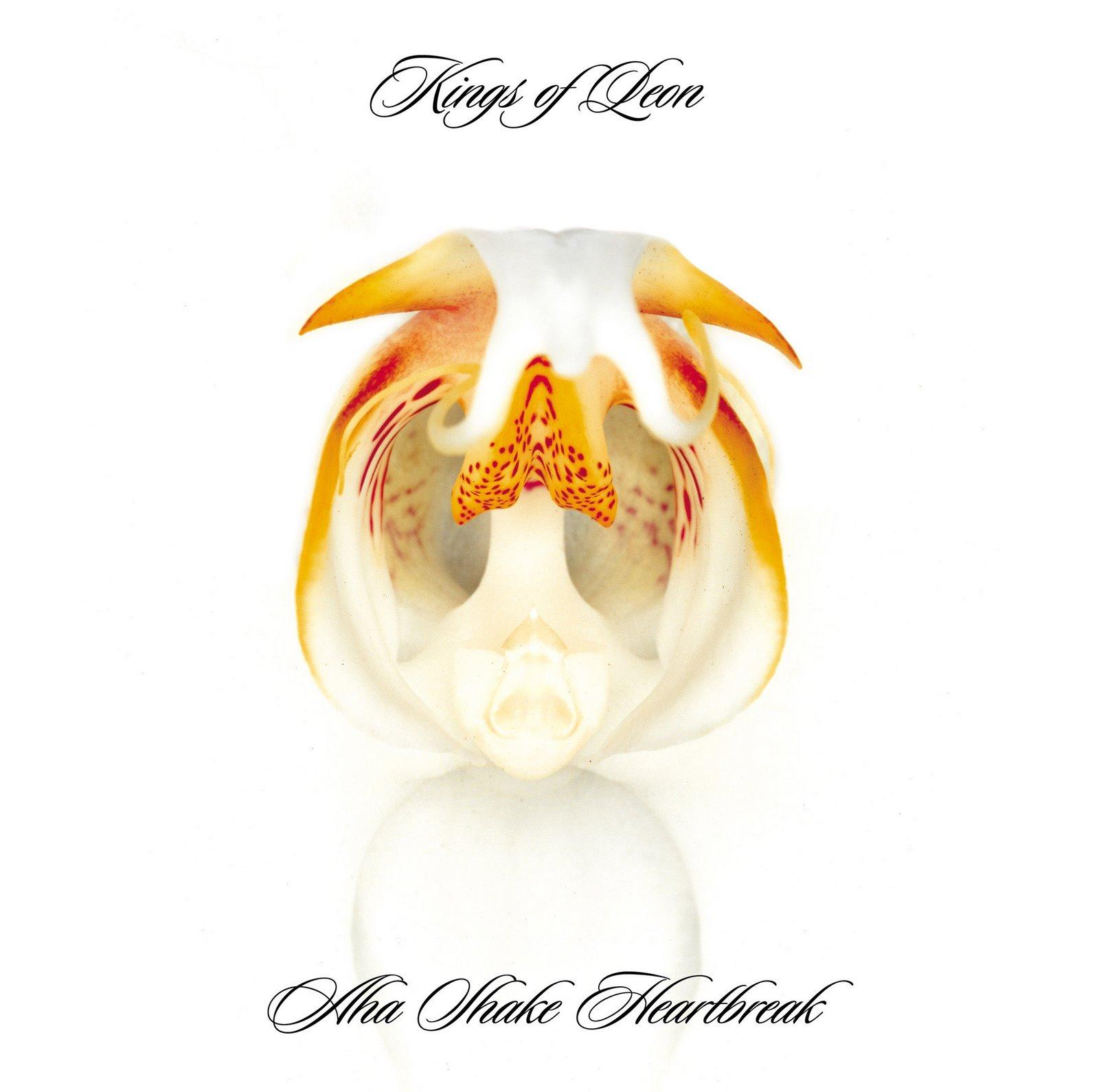 Zeta Flight: Kings of Leon - Aha Shake Heartbreak