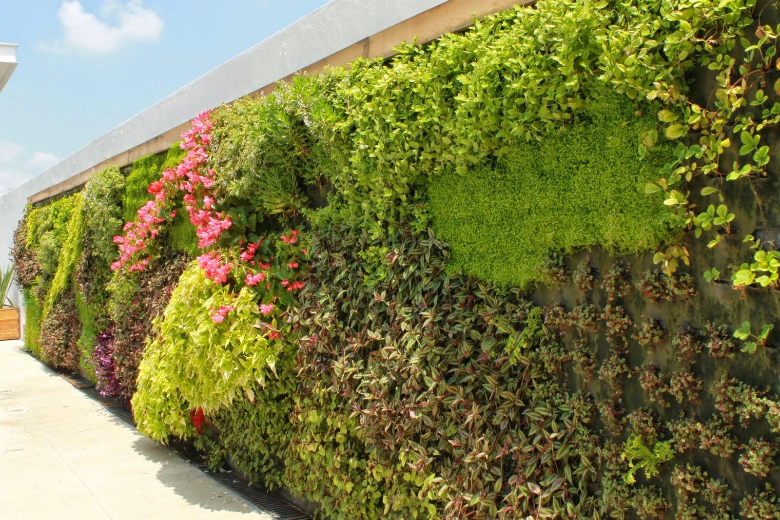 marbella muros verdes by marbella valdez gutierres o