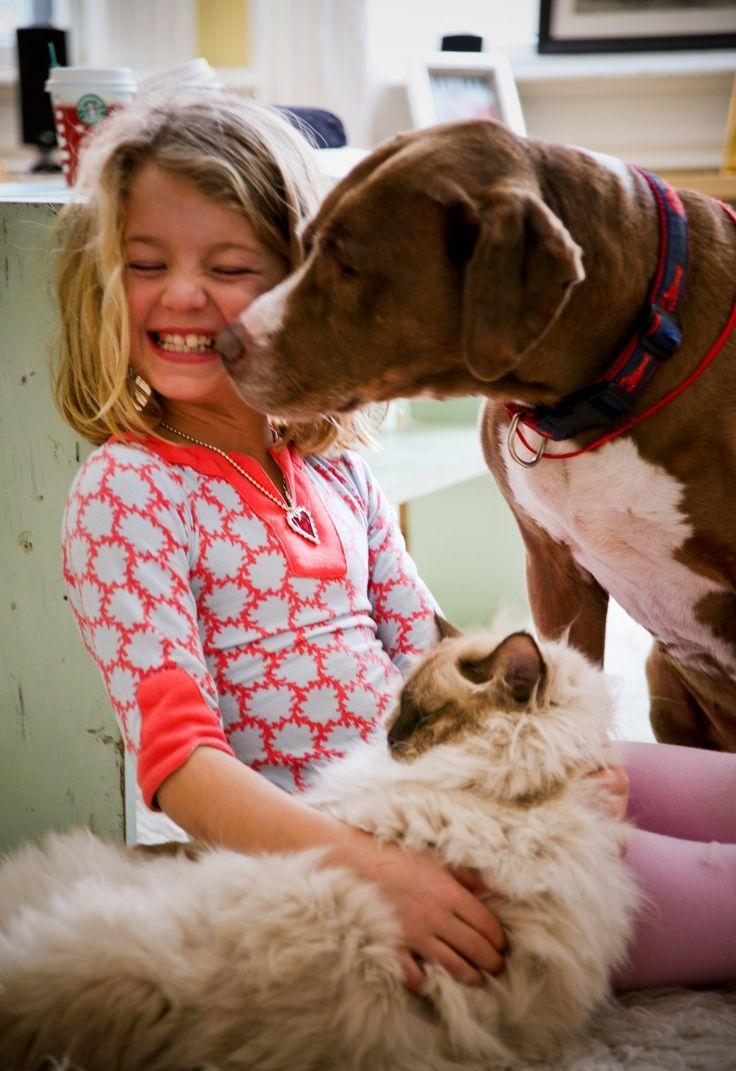 10 Reasons Why Cats Make Great Pets
