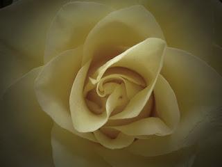 Kumpulan Puisi Cinta Romantis Untuk Pacar Atau Kekasih