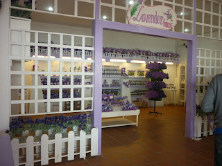 lavender garden, cameron highlands, kedai cenderamata