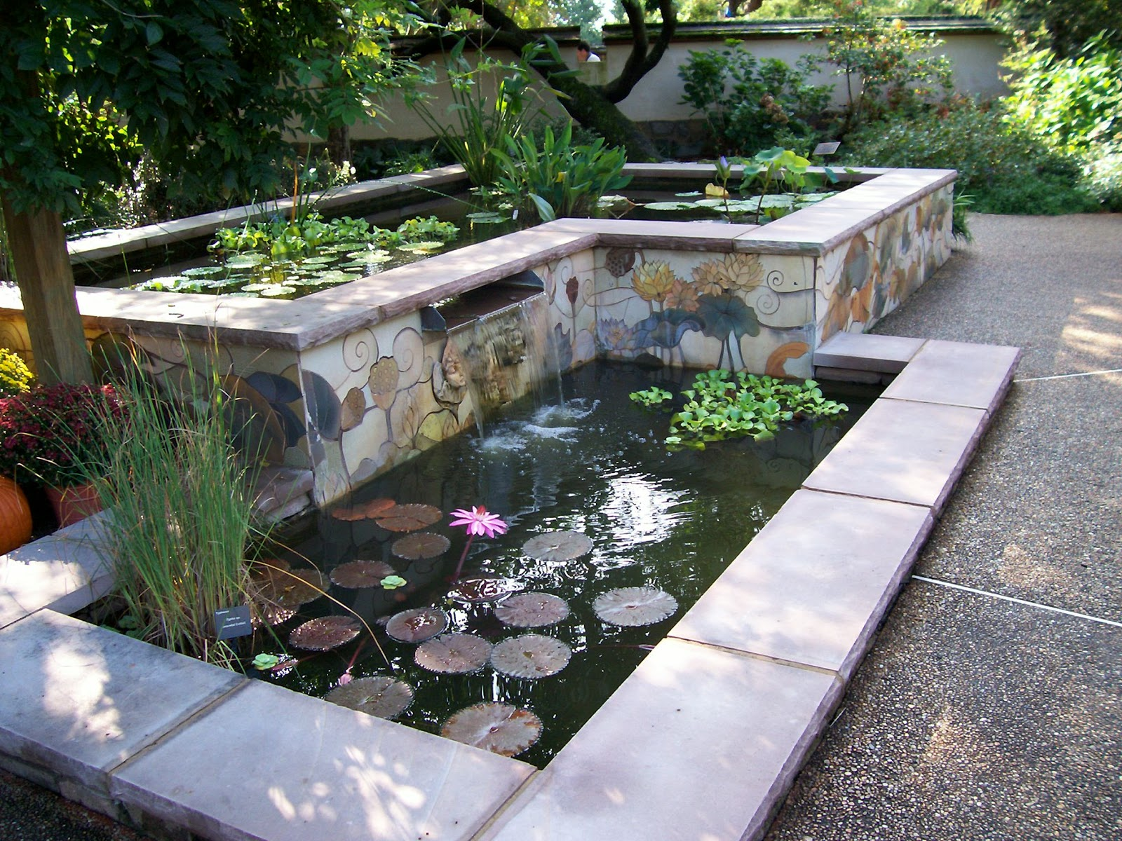 Copings regal concretes scunthorpe for Raised koi pond ideas