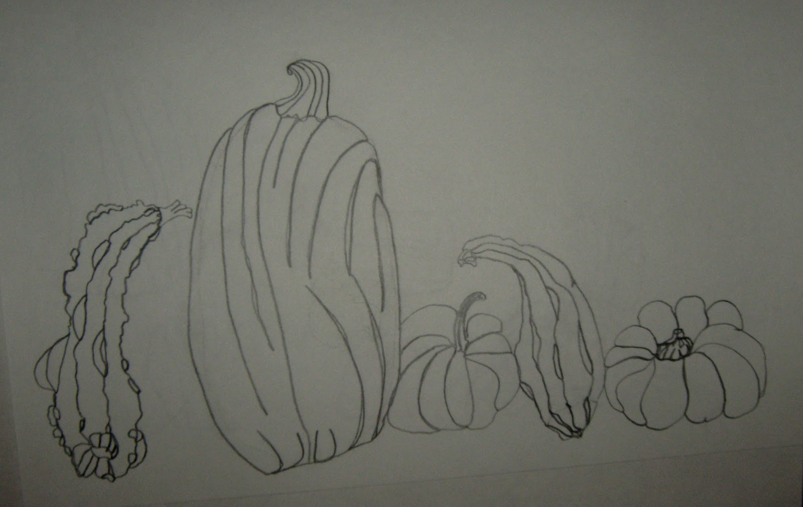 Contour Line Drawing Pumpkin : Art in the middle school november