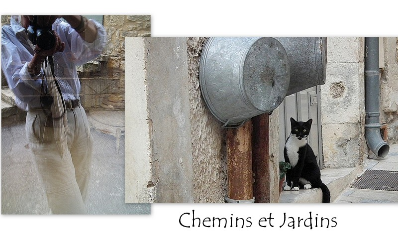 Chemins et jardins  (blog  photo )