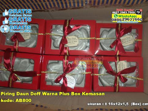 Piring Daun Doff Warna Plus Box Kemasan unik