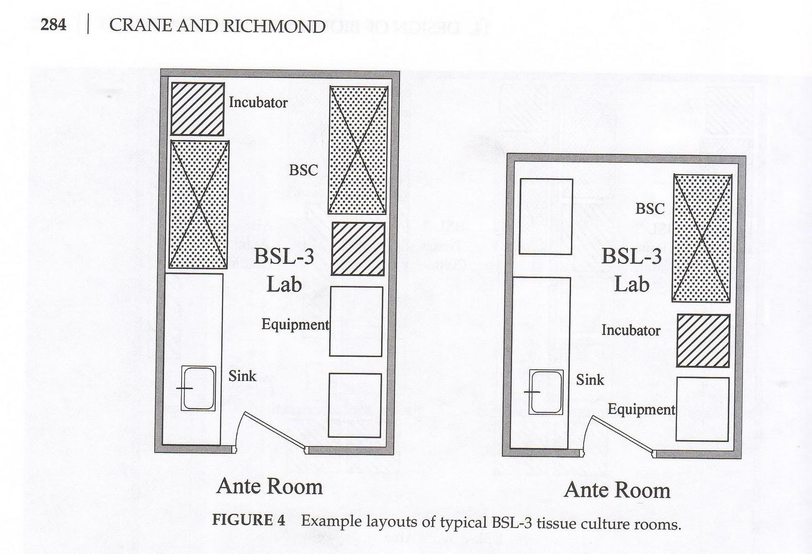Plant tissue culture laboratory design layout crazywidowinfo