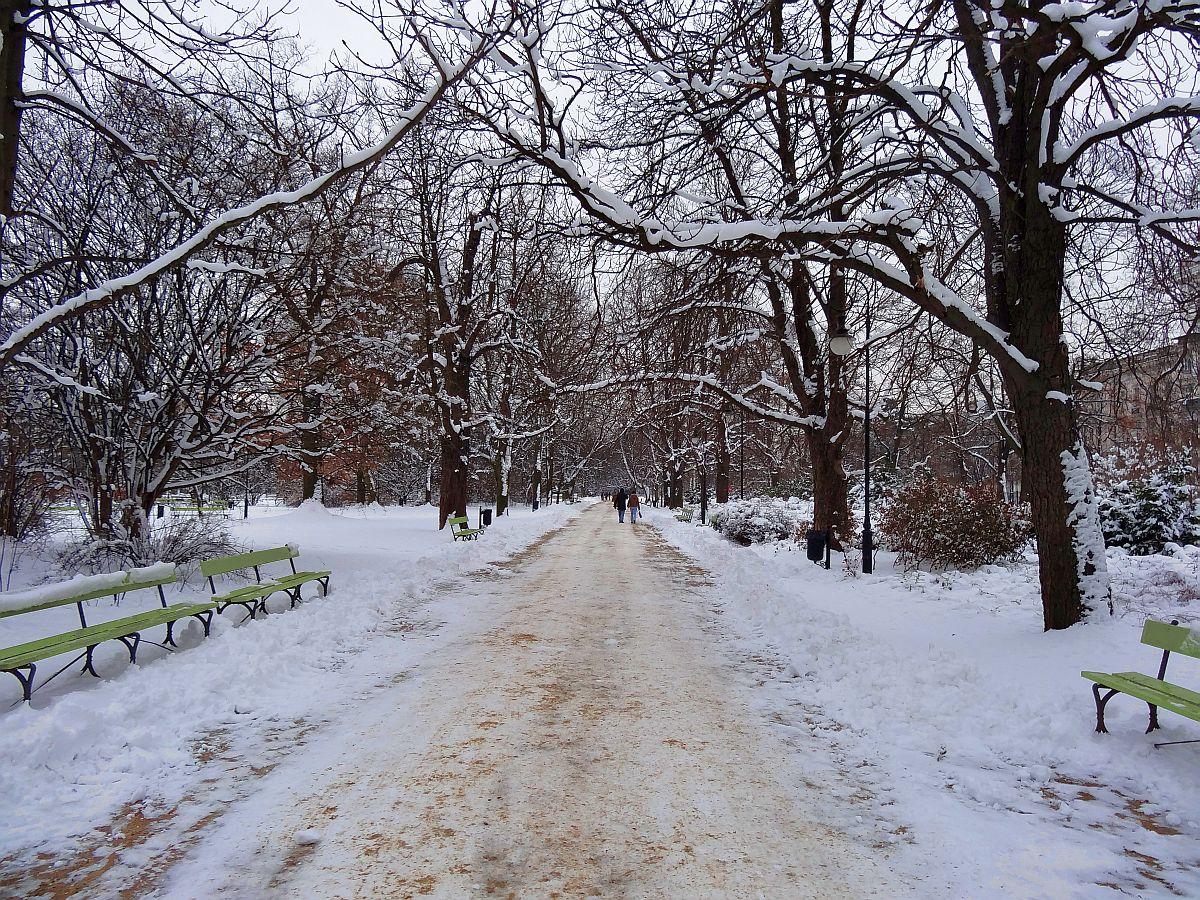 Park Ujazdowski zimą