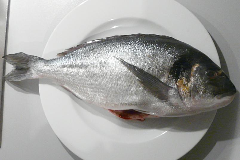 Kulinarische Welten zu Fisch- und Meeresfrucht: Februar 2012