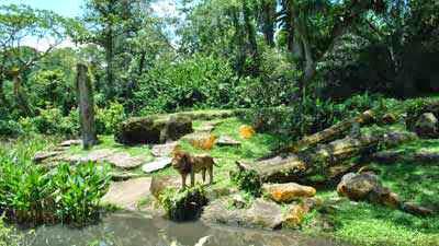 10 Kebun Binatang Terbaik di Dunia