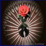 eine-rose-zum-muttertag