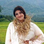 Kajal Agarwal Cute In Saree From Mr.Perfect Movie Stills