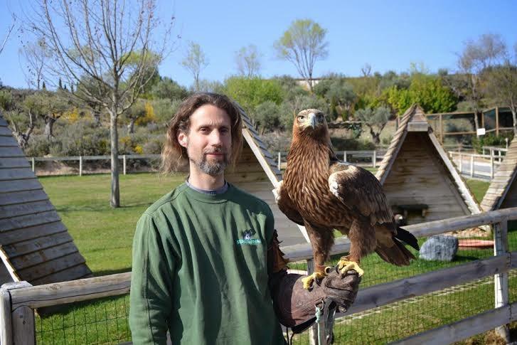 águila imperial en Sendaviva
