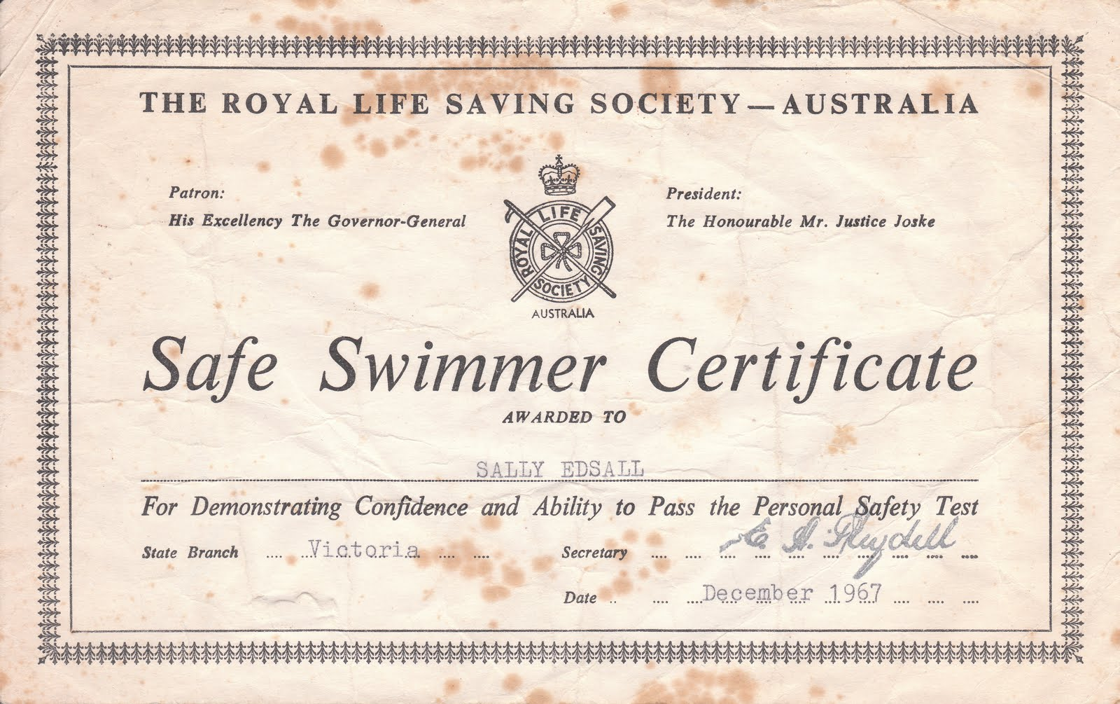 Swimming Helen Pitt They Never Told Me I Wasn 39 T A Champion Sydney Morning Herald 12 Jan