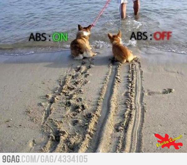 freio ABS, cachorro, eeeita coisa