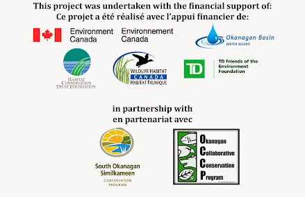 Thank you to our partners and funders