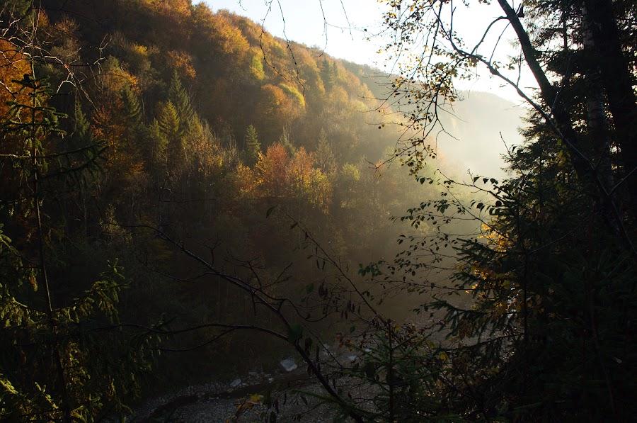 Карпаты. Осенний поход в горы по маршруту Буковель - Манява. Часть 2