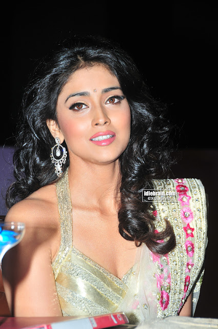 Tamil Actress Shriya Saran Sexy Photo