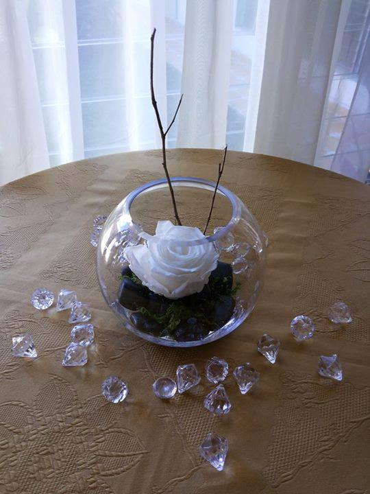 Rosas Naturales Preservadas Blancas ¡Duran 4 Años! Santa Ana, El Salvador