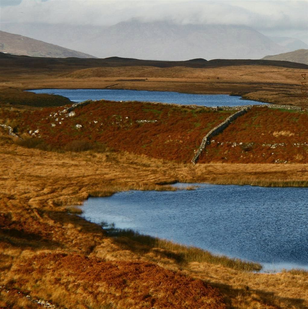 landscape from Connemara with a lake, mountains and golden coloured grass