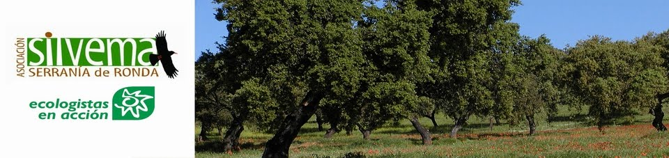 Silvema Serranía de Ronda - Ecologistas en Acción