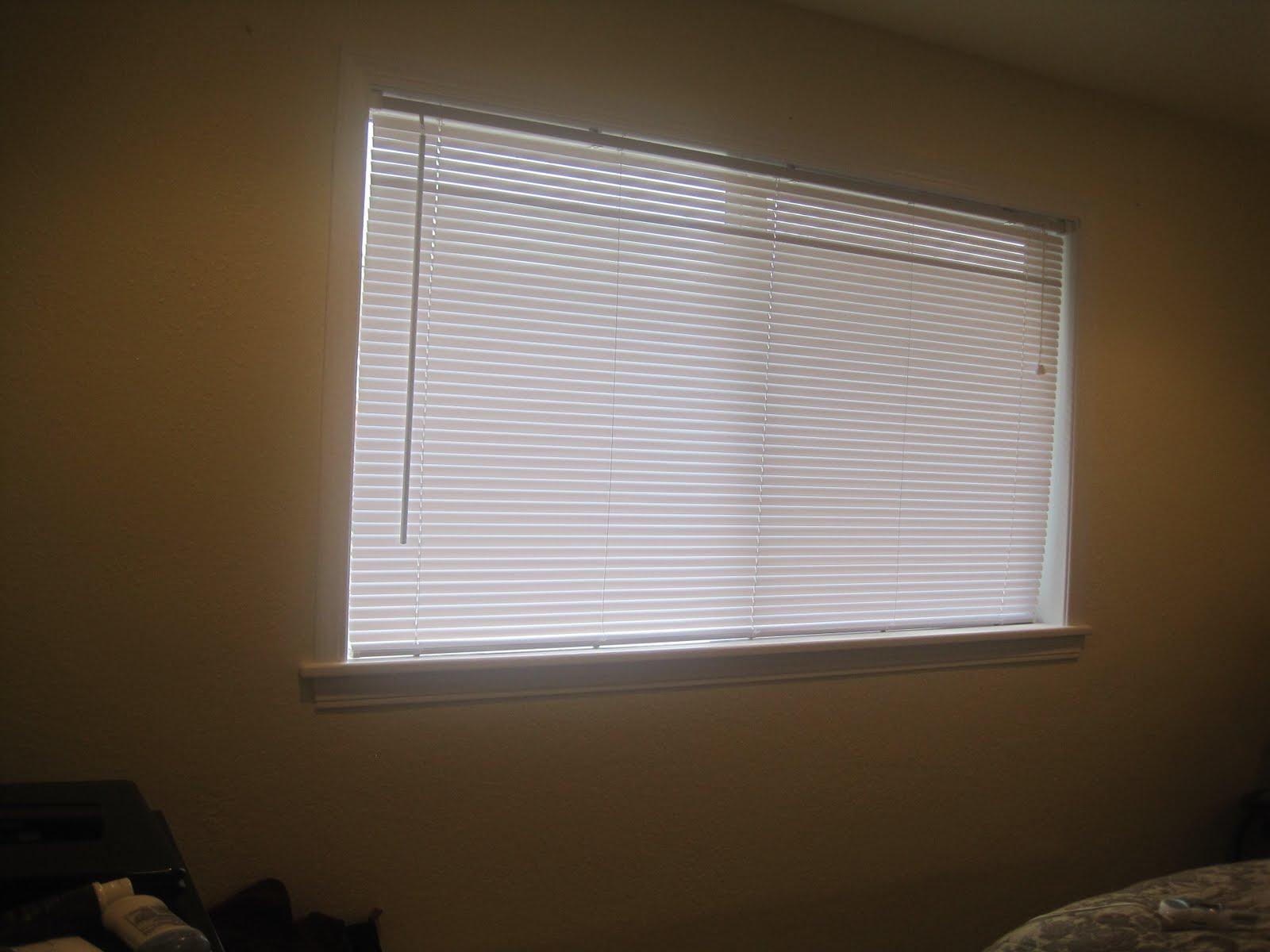 Home Depot Mini Blinds