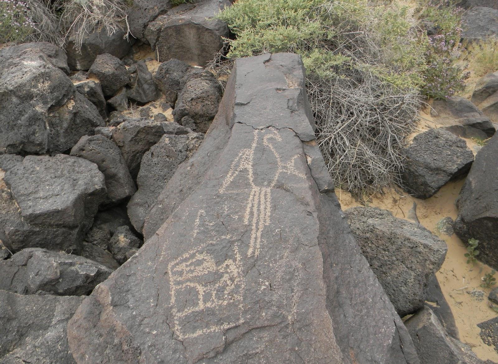 the hikemasters trail descriptions boca negra petroglyphs