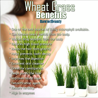 Healthy Wheatgrass Juice And Juicer In India