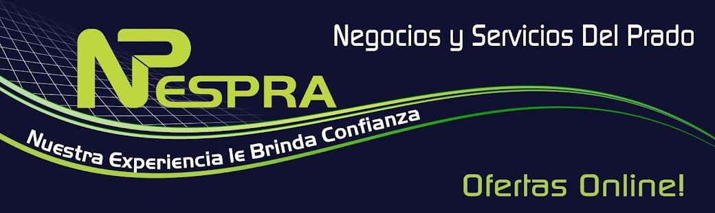 NESPRA: Negocios y Servicios Del Prado