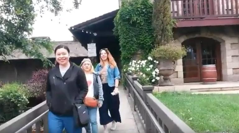 Napa Valley Tour