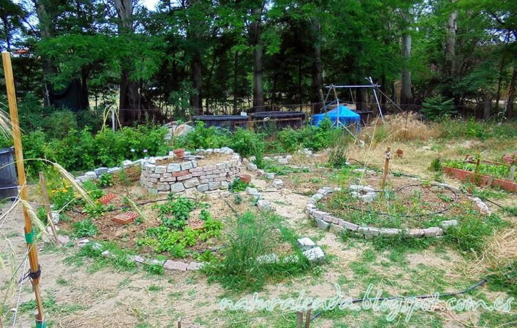 espiral para plantas medicinales estilo permacultura