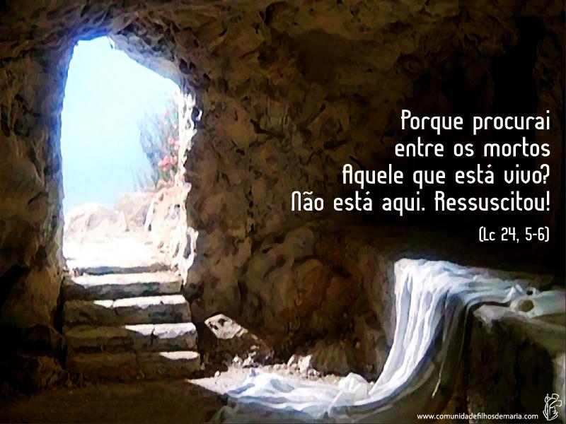 Nóis No Céu As Provas Da Ressurreição De Jesus
