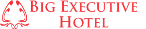 logo big executive hotel