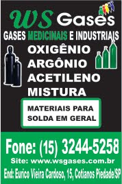 WS Gases