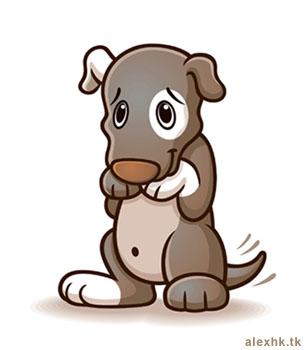 Significado dos sonhos cachorro - Interpretacao de Sonhos