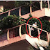 Spotted Ranbir Kapoor standing in the balcony of his Carter Road residence!