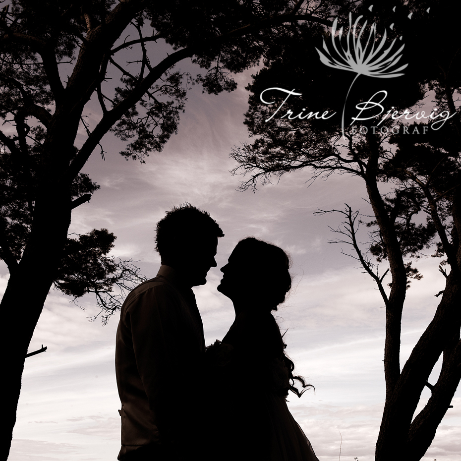 Siluettbilde av brudepar, Bryllupsfotograf Trine Bjervig, tønsberg