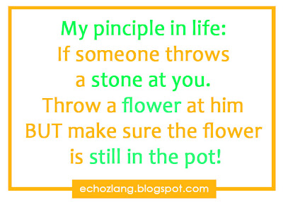 My principle in life: If someone throws a stone at you. Throw a flower at him