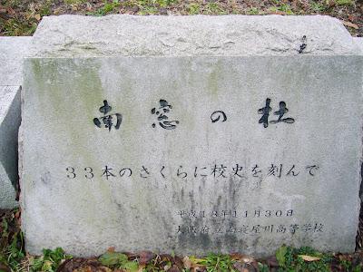 大阪府・深北緑地 桜の園 南窓の杜