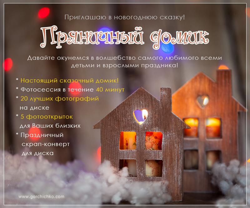 Новогодний фотопроект к Гродно. Детский новогодний фотопроект. Фотограф Ольга Горчичко