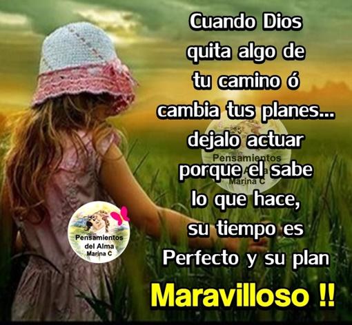 Cuando Dios quita algo de tu camino ó cambia tus planes dejalo actuar porque él sabe lo que hace su tiempo es perfecto y su plan Maravilloso !!