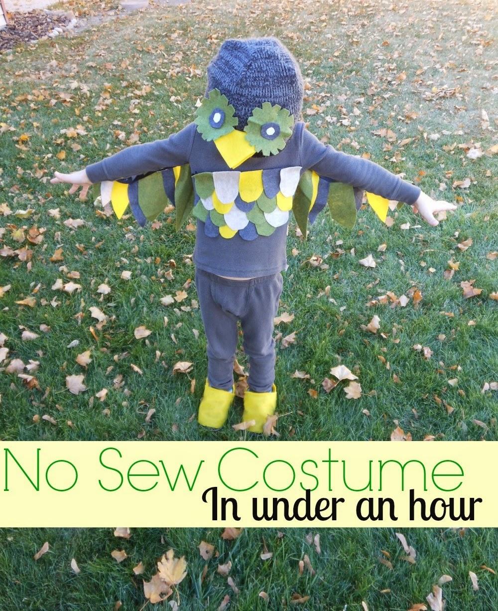 Easy no sew costume