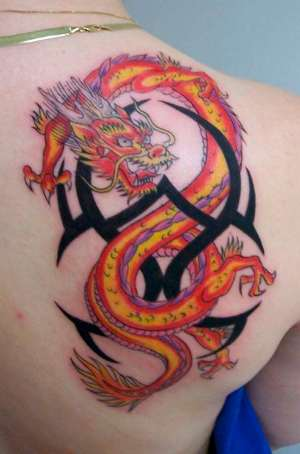 Dragon Tattoos Collection